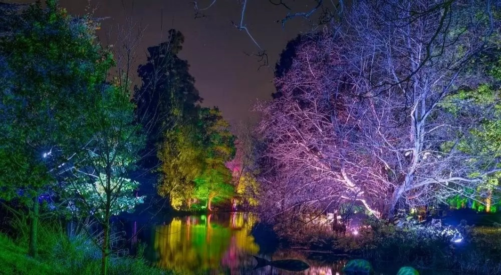 Enchanted Woodland - Beautiful Places Of London To Visit In Winter
