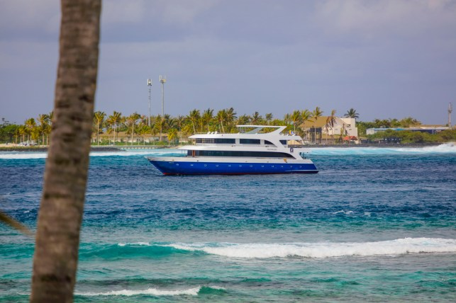 Go party with the brasilians of MaldivesSurfTrip