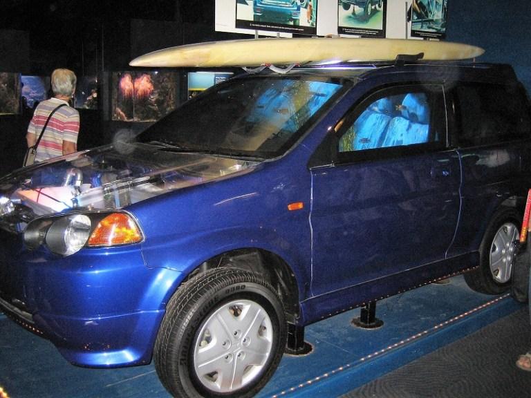 Daytrips Brisbane_Auto Aquarium Mooloolaba