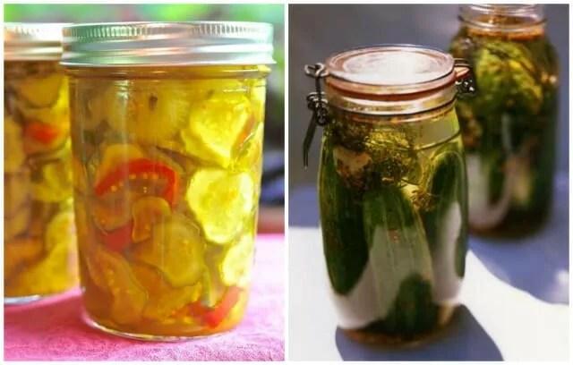 0cd4e2a734c5 dan koshansky's refrigerator dill pickles - A Way To Garden