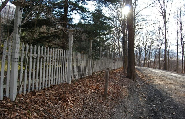 Just Saying No To Deer With Fencing A Way To Garden