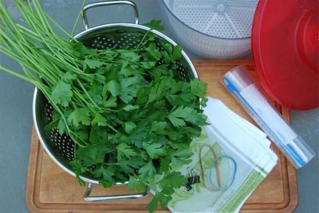parsley-gear