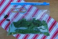 parsley-stuffed-down
