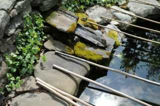 heron-proofing-the-frogpond