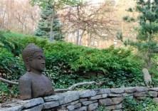 microbiota-with-buddha
