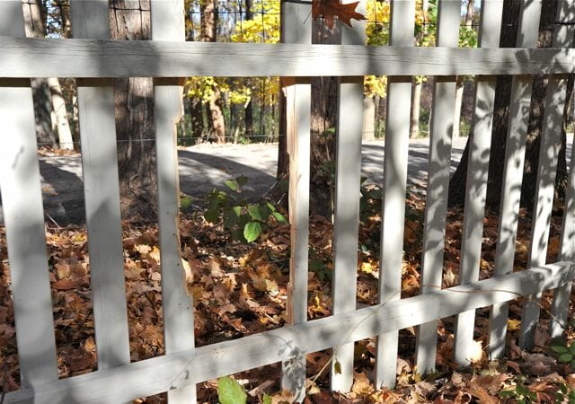 hole in fence from bear