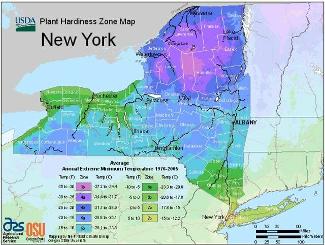 NY 2012 USDA Hardiness Zone Map