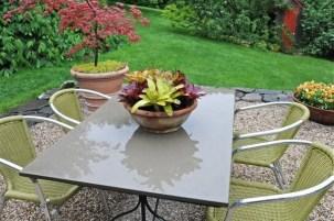 bromeliad-centerpiece