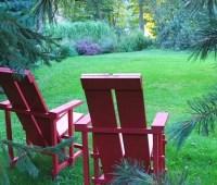 the art of garden-making, with dan benarcik