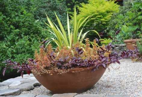 large-planter-2012-summer