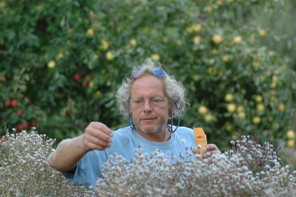Frank Morton of Wild Garden Seed
