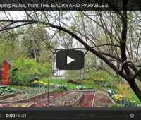 book video: my seed-shopping rules