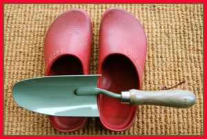 those red garden clogs of mine birkenstocks A Way To Garden