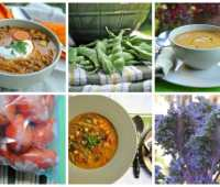 soup's on! 3 garden-to-freezer recipes
