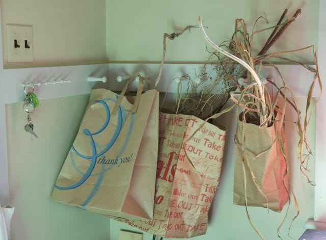 Paper bags of seed drying in the mudroom.