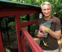 a raised-bed garden survives 'killer compost'