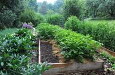 Margaret Roach vegetable garden
