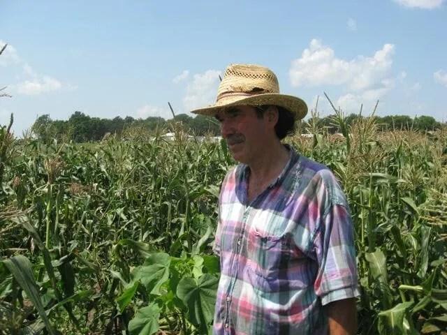 martin-corn-field-2