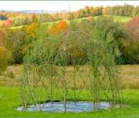 creating living willow structures, with michael dodge