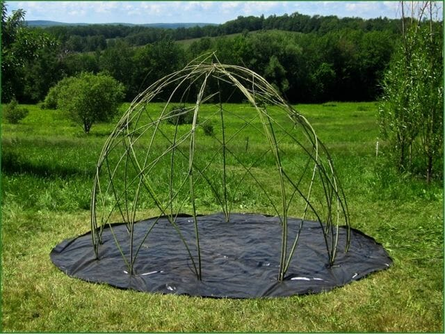 Willow_Dome _TLF