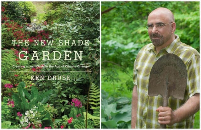 ken druse new shade garden