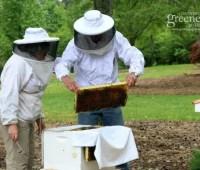 beginning beekeeping, with joe lamp'l