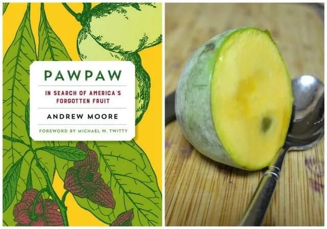 pawpaw image