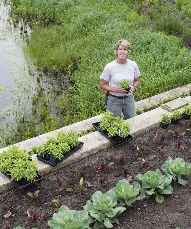 Edible-landscaping Ideas, With Lisa Hilgenberg Of Chicago