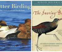 stop and look around you: books for observers of nature