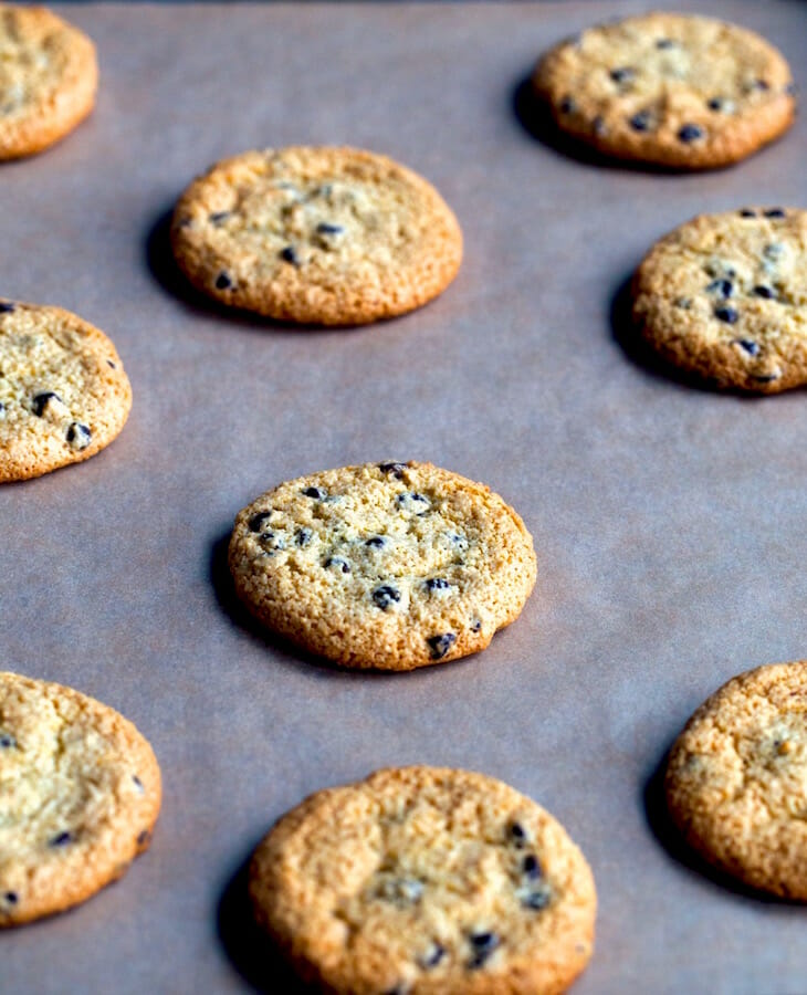 Paleo-Chocolate-Chip-Cookies-