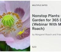 new webinar! 'the 365-day garden' with margaret roach