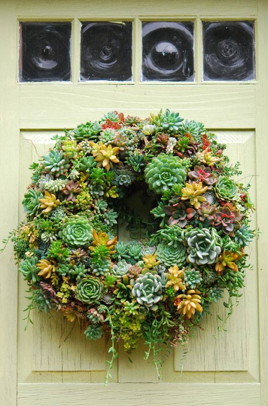 Succulent wreath by Katherine Tracey