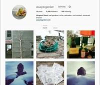 my instagram resolution (and my birdbath meringue pie)