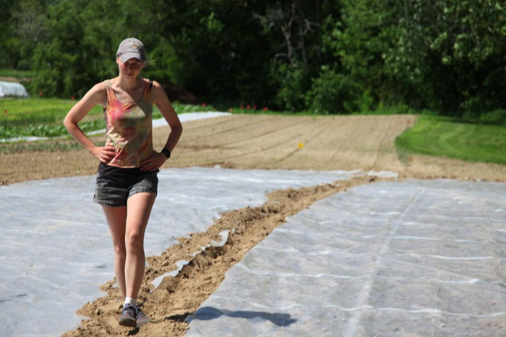 reducing weeds: a 101 on soil solarization, with sonja birthisel