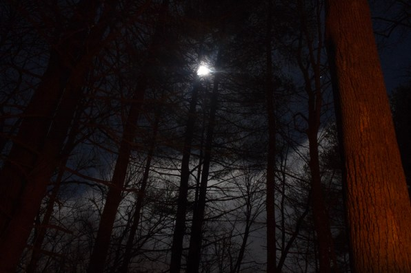 Full moon in the Pisgah National Forest