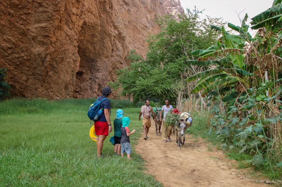 Walking past donkeys on the trail to Wadi Shab. Oman with kids.