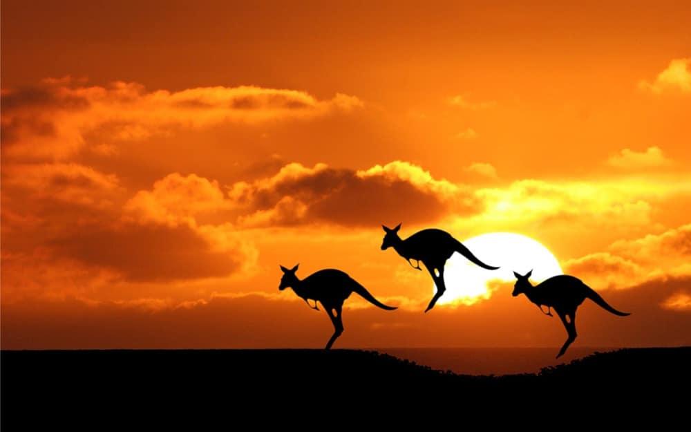 Особенности онлайн визы в Австралию в 2019 году