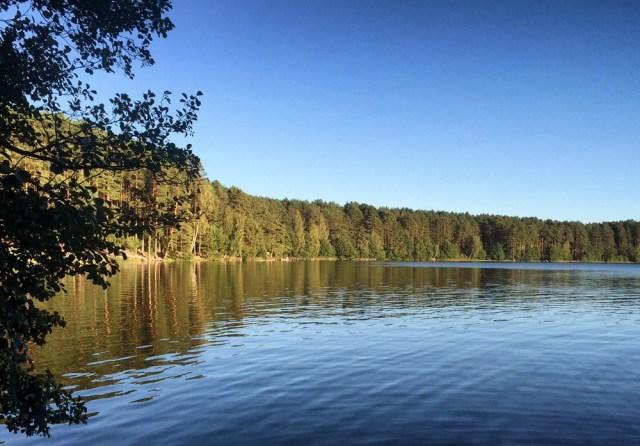 Литва Вильнюс осенью в сентябре