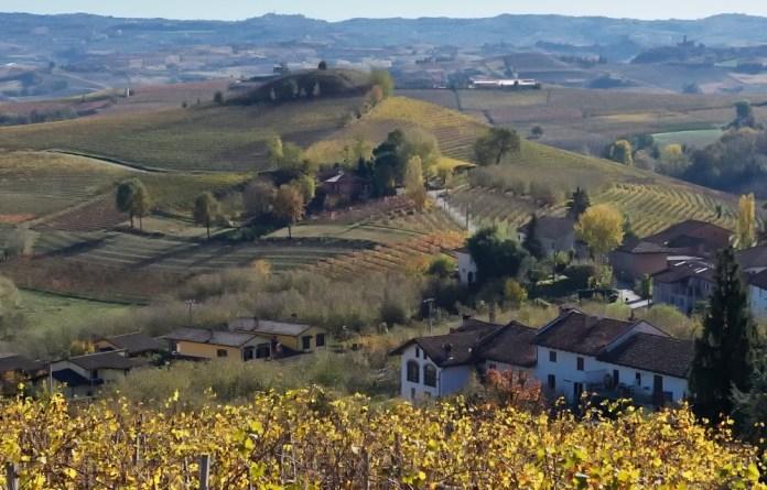 Вина Пьемонта Италия