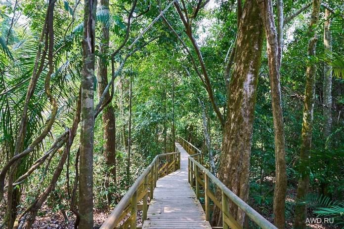 Национальный парк Мануэль Антонио