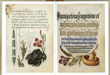 «Образцовая книга каллиграфии»