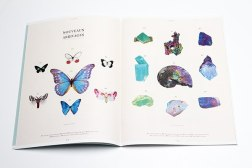 Студенческий проект. Дизайн журнала Deyrolle.
