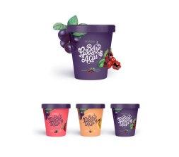 Название, логотип, иллюстрации и упаковка марки бразильского мороженого Açaí Berry
