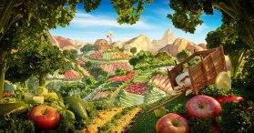 «Хлебная страна чистоты Panera»