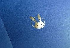 Фирменный стиль и иллюстрации для детского клуба премиум класса White Rabbit House