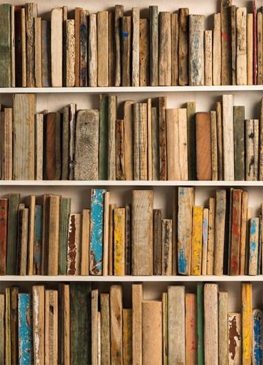 Серия плакатов для библиотеки Палермо