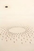 Агломерации — серия работ колумбийского художника Фелипе Бедойи