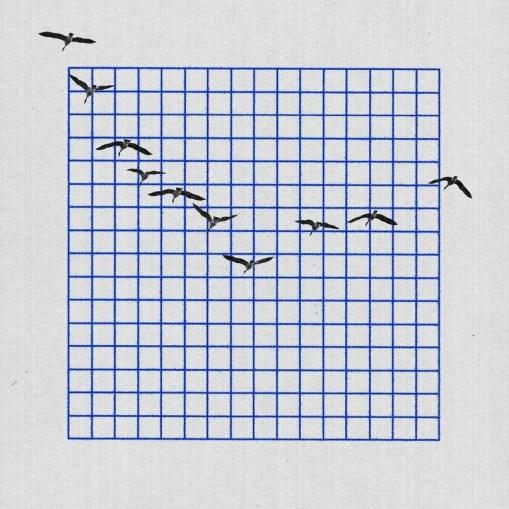 Графические эксперименты Райана Карла из Нью-Йорка
