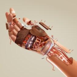 Работы Рёго Тоёды, трёхмерного иллюстратора из Токио