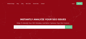 awebsiteguy_seo_analyzer-300x136-1